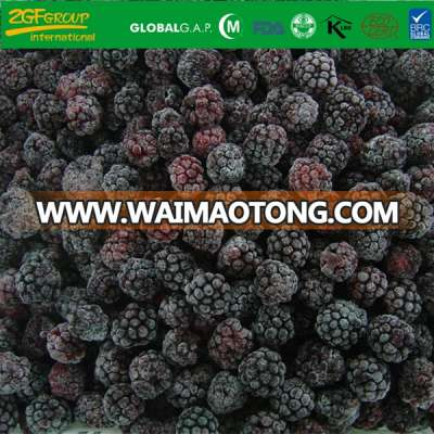 Grade A Frozen Blackberry IQF Fresh Blackberries