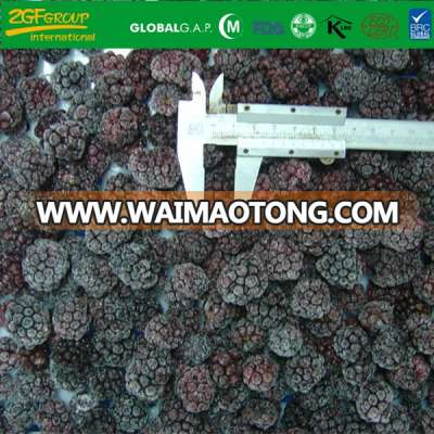 Grade A Frozen  IQF Organic Blackberries
