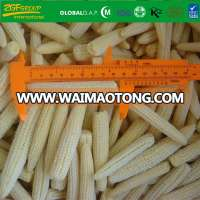 Grade AFrozen IQF Whole Baby Corn