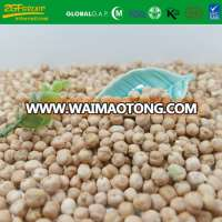 Dried Products Kabuli Chickpeas 6-10mm