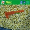 New Crop IQF vacuum sweet corn