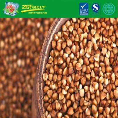 High Quality Buckwheat With A Cheap Price