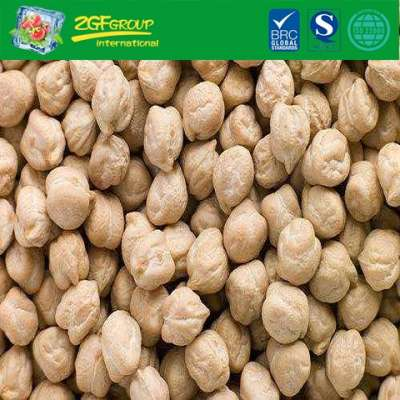 New Crop High Quality Chick Pea