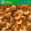 2019 New Crop IQF Apricot Halves/Dices