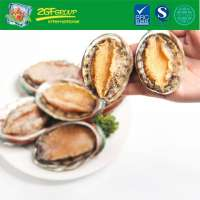 Yummy Instant Abalone