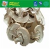 Dried White Button Mushroom With A Good Price