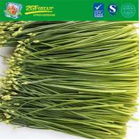 2019 Frozen Chinese-Leek Flower With Good Price