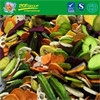 Low Fat Vacuum Dried  Mixed Vegetables
