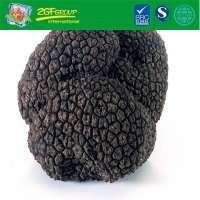 Great Grade Dried Black Truffle From China