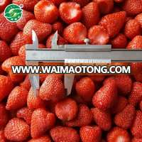 Iqf fresh frozen strawberry and frozen strawberries for sale