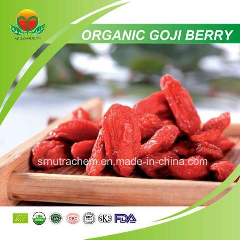 Manufacturer Supplier Organic Goji Berry
