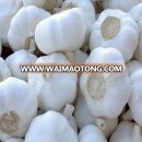 2018 new crop type buy chinese natural fresh garlic pure white garlic price