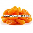 Best Quality Juicy Fresh Apricot / Dry Apricot