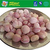 VIETNAM HIGH QUALITY IQF FROZEN WHOLE/ BABY ONION/ SHALLOT - COMPETITIVE PRICE