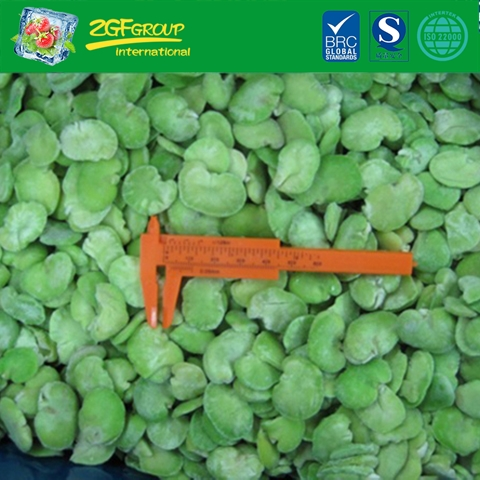 IQF peeled broad beans