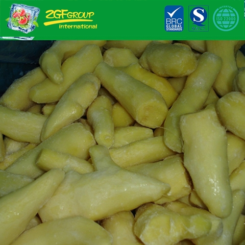 Supply shandong fresh ginger